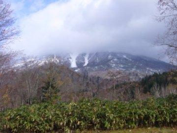 Hokkaido34